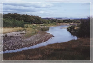 Bear River near Evanston (Dick Toth, USU)