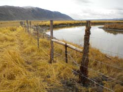 Upper Bear River Fencing project