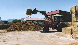 Moving a bale of hay